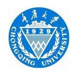 重庆大学2011年翻译硕士(MTI)真题